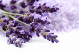 10 растений против головной боли