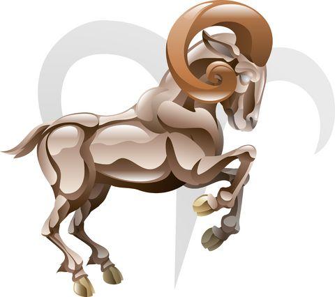 Овен Лошадь – характеристика мужчин и женщин
