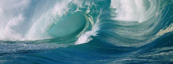Люди, принадлежащие к элементу воды. Рак, Скорпион, Рыбы. Учимся жить по фэн-шуй
