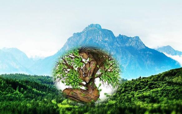 Общая характеристика для людей, принадлежащих к элементу земля. Учимся жить по фэн-шуй (Часть 2)