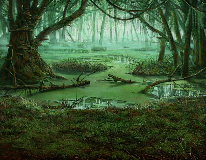 К чему снится болото