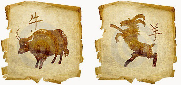 Телец Коза – характеристика мужчин и женщин