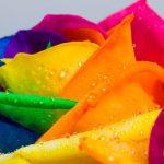 Какие цвета вызывают радость, а какие печаль, и с чем они ассоциируются