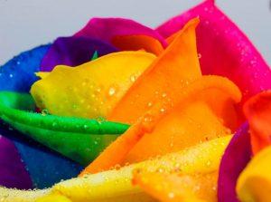 Значение цвета, что он расскажет о характере человека