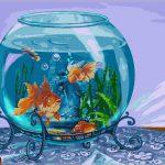 Приснился аквариум: как трактовать сновидение