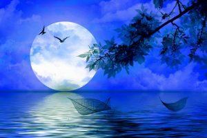 Астрология Луны: лунный цикл и его особенности