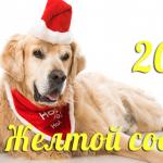 Гороскоп на 2018 год: что нам готовит жёлтая Собака?